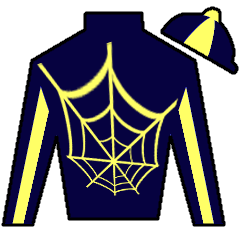 Icy Ride Silks