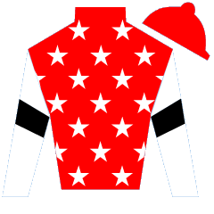 Mario L. Martinez Silks