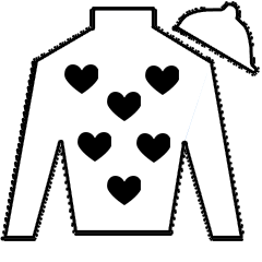 On Stirling Bridge Silks