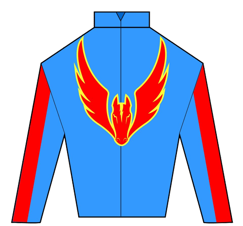 Captain Hadley Silks