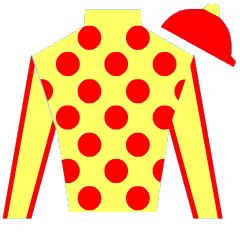 B Z Warrior Silks