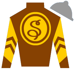 Sparks Will Fly Silks