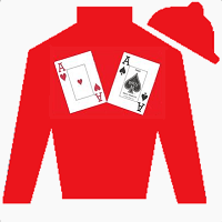 Dixie's Hope Silks