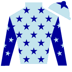 Raine's Cross Silks