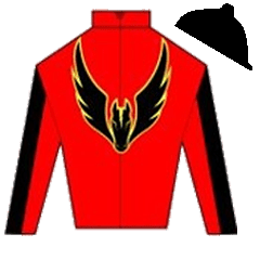 Proud Vixen Silks