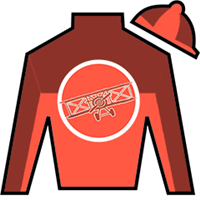 Tatters To Riches Silks