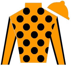 Narly Ride Silks