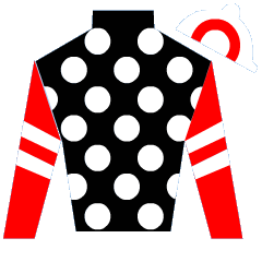 Wickedly Perfect Silks