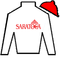 Delta Warrior Silks