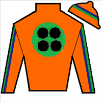 Star Runner Silks