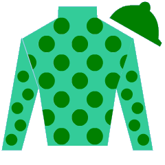There Is No Limit Silks