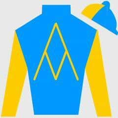 Tiz West Silks