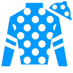 Travinator Silks