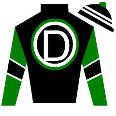 Treasure Hunter Silks