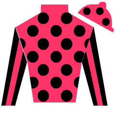 Tweet Lady Silks
