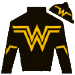 New Believer Silks