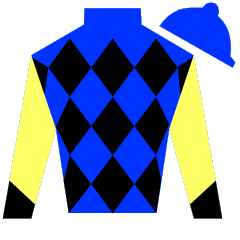 Wildcat's Slew Silks