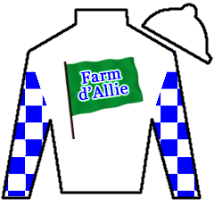 Win Lion Win Silks