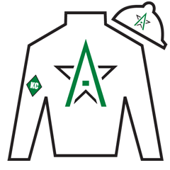 Blackstone Bay Silks