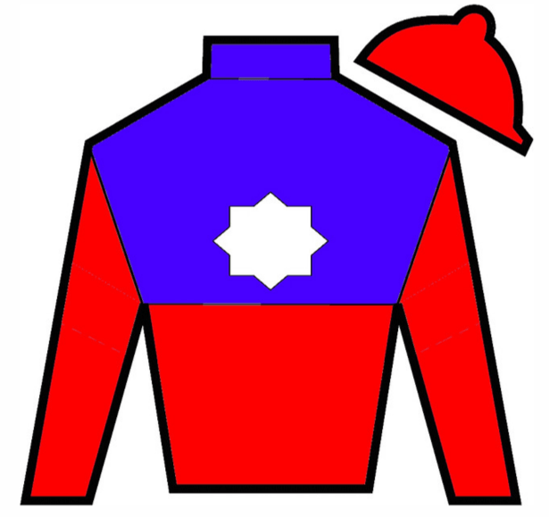 Hark the Herald Silks
