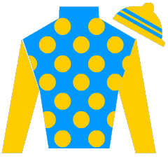 Take To The Limit Silks