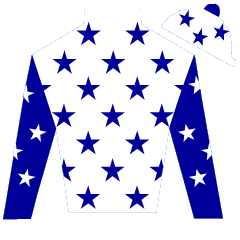 Sunraider Silks