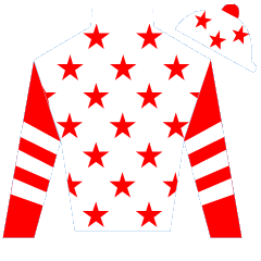 Knight's Parade Silks