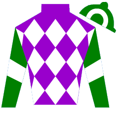 Arch Rebel Silks