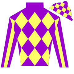 Random Success Silks