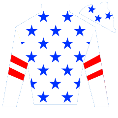Actor's Groove Silks