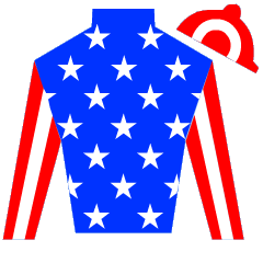 Castle Bar Sling Silks