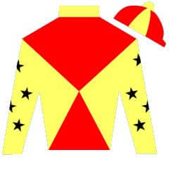 Pound Piece Silks