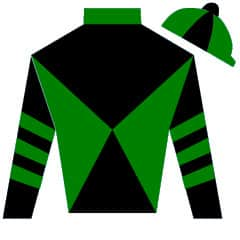 Born To Be King Silks
