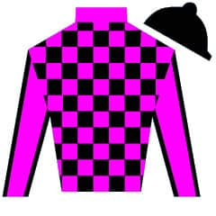 Safari Artie Silks