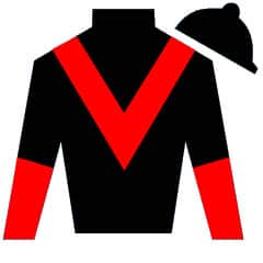 A Single Man Silks