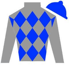 Chief Of Affairs Silks