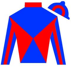 No Such Number Silks