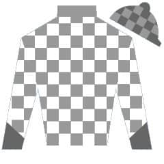 Glenco Kid Silks