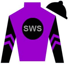 Risk Factor Silks