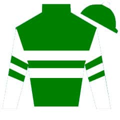 Lady of Shamrock Silks