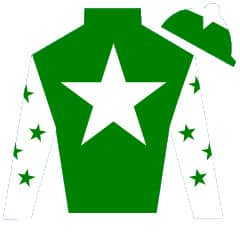 Lord Of The Stars Silks