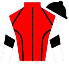 Van Der Art Silks