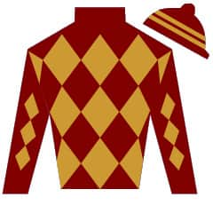 Too Nice Name Silks