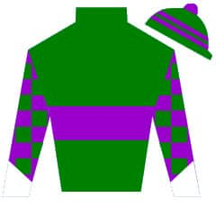 Big Bane Theory Silks