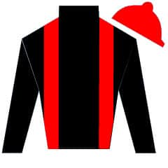 First Avenue Silks