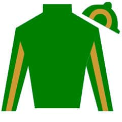 Winning Express Silks