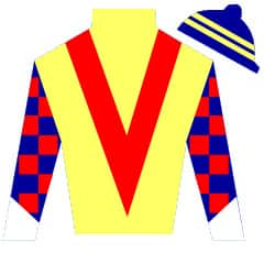 Forever Elation  Silks