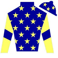 Born To Reign Silks