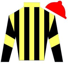 Suited And Booted Silks
