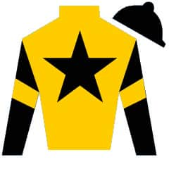 Valuation Silks